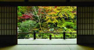 """Колекцијата Embodied Beauty™ од Interface подни облоги – инспирирана од јапонскиот концепт """" Икигаи"""""""